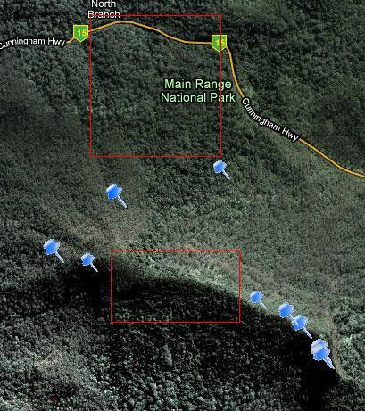Mt. Mitchell Track